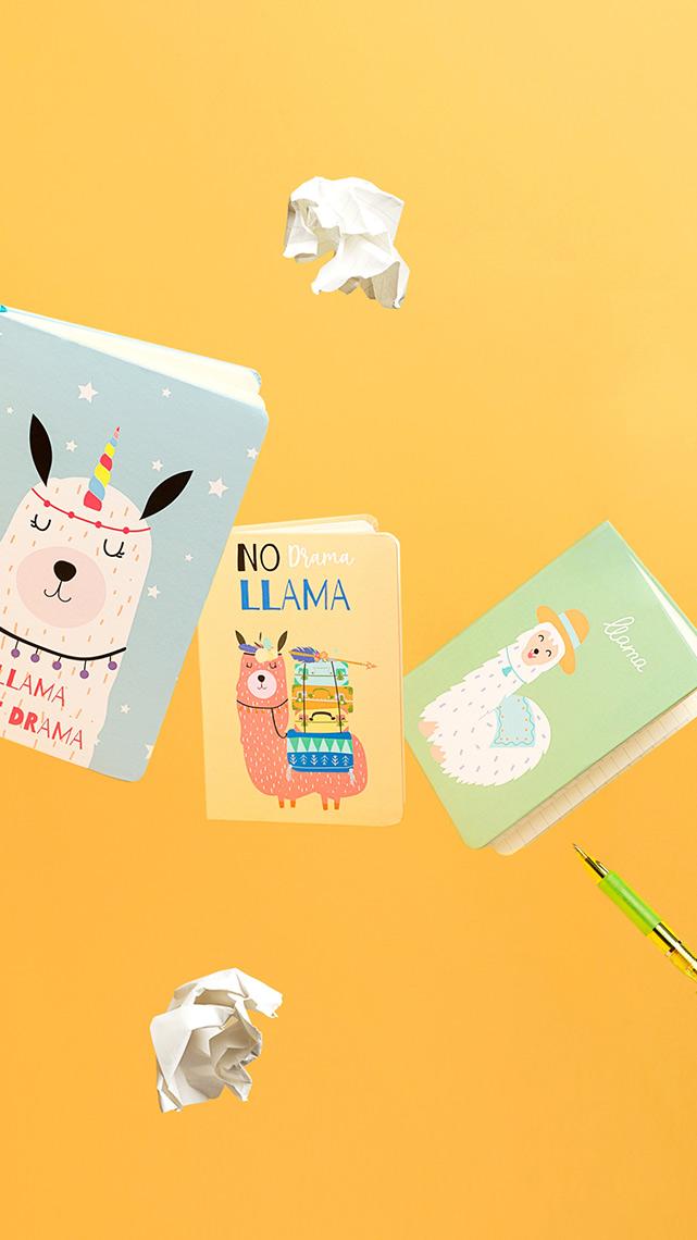Fotografía Creativa - Storytelling Visual - Detalles Cuadernos de Notas - Divertido - Papelería - Madrid Papel - Låpsüs