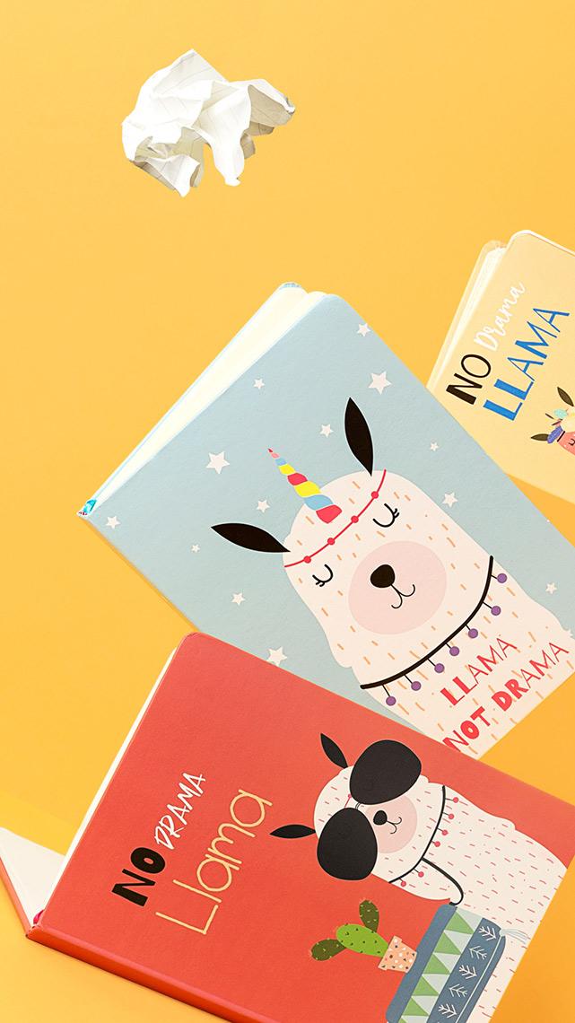 Fotografía Creativa - Storytelling Visual - Cuadernos de Notas - Detalle Ilustración Llamas - Divertido - Papelería - Madrid Papel - Låpsüs