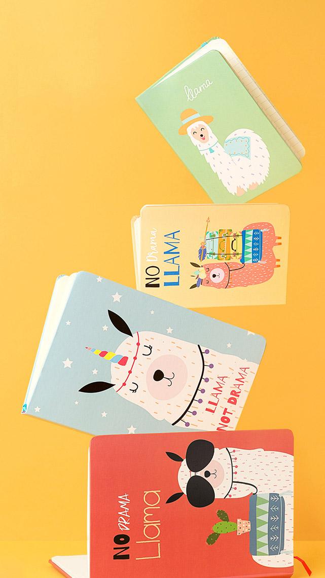 Fotografía Creativa - Storytelling Visual - Cuadernos de Notas - Ilustración Llamas - Divertido - Papelería - Madrid Papel - Låpsüs